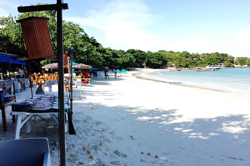 la lune beach resort samedayessay